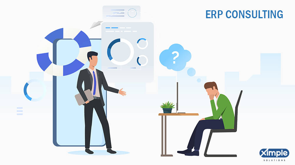 ERP Consulting